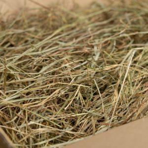 Das nahrhafte Wiesenheu – 2. Schnitt / Grummet (2-4 kg)